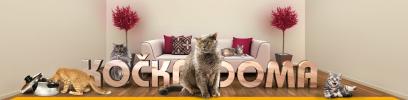 Chovatelské potřeby a krmiva pro kočky